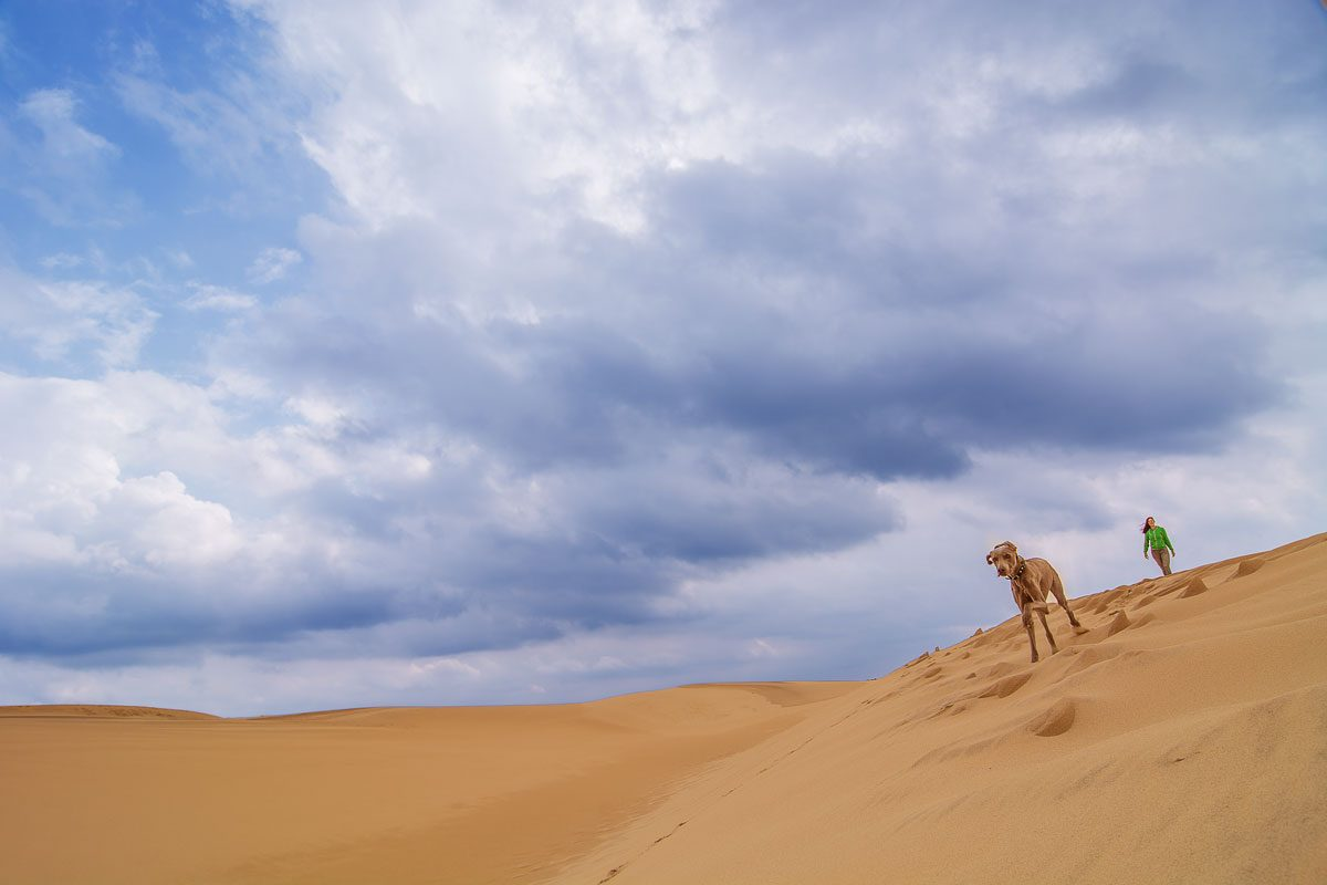 Fenja auf der Dune du Pilat