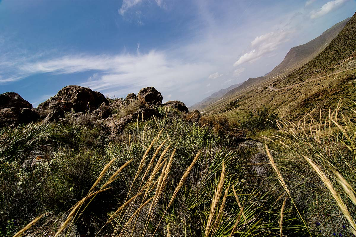 Landschaft im Cabo de Gata, Spanien