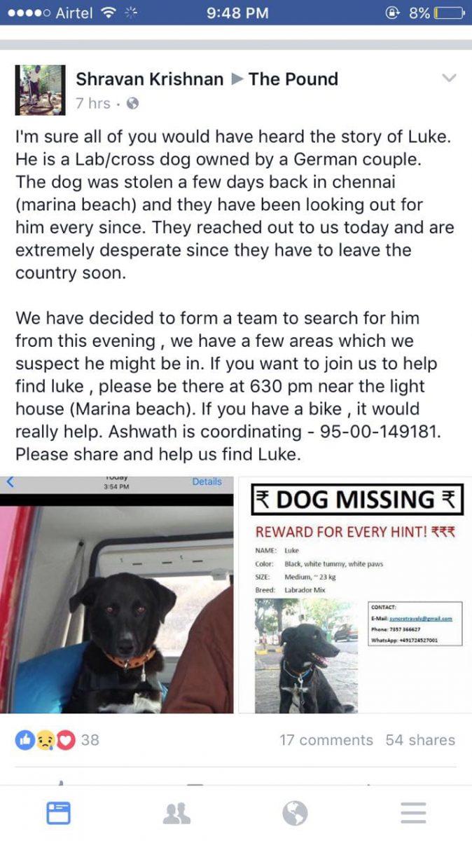 Suchanzeige nach Hundediebstahl in Indien in den Sozialen Medien