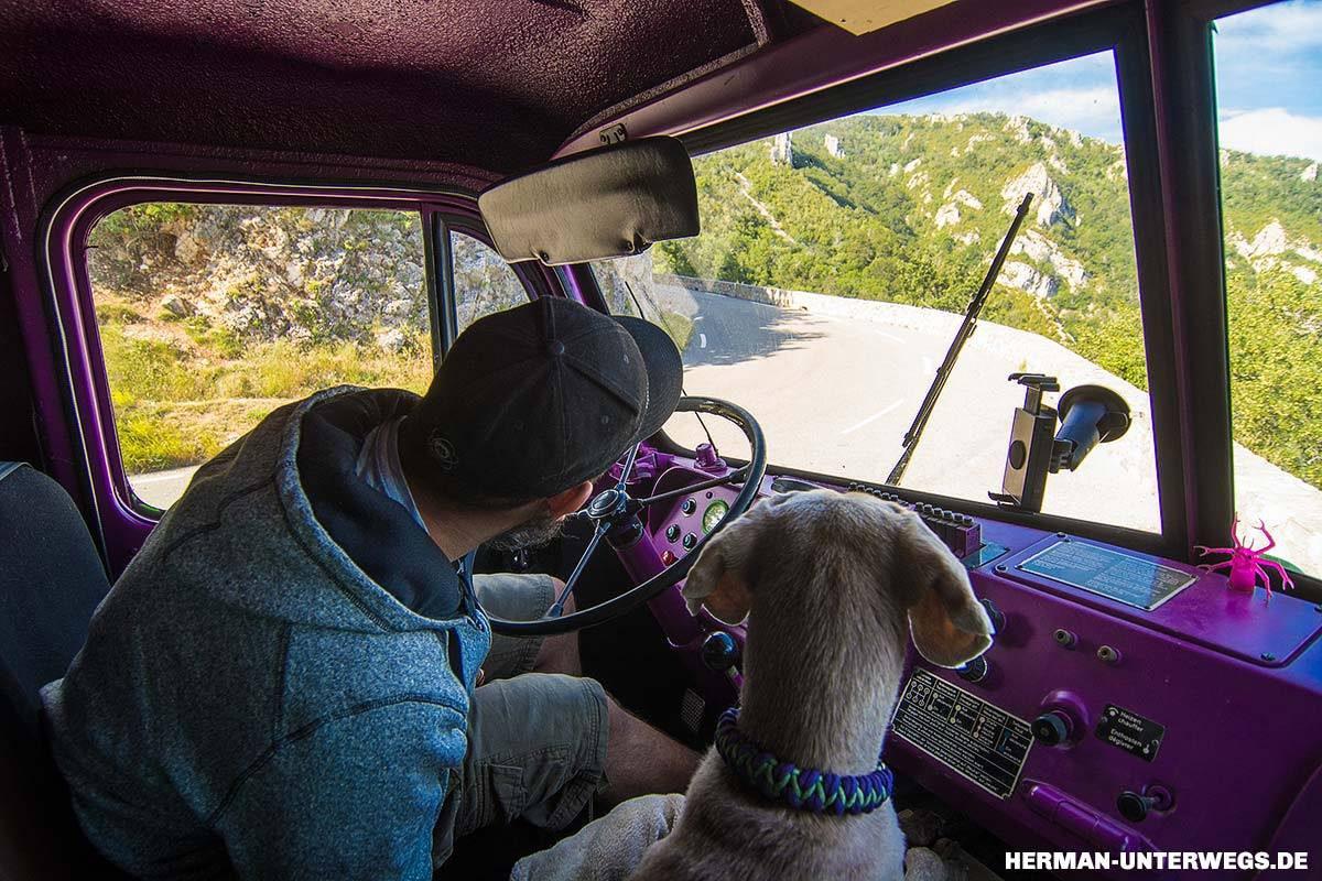 Steyr 680 Fahrerhaus mit Hundeplatz