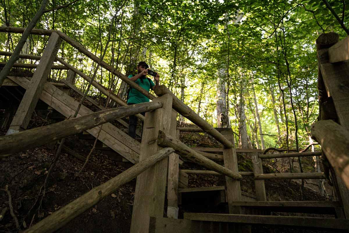 Abstieg vom Hochuferweg zum Fuße der Kreidefelsen auf Rügen im Nationalpark Jasmund