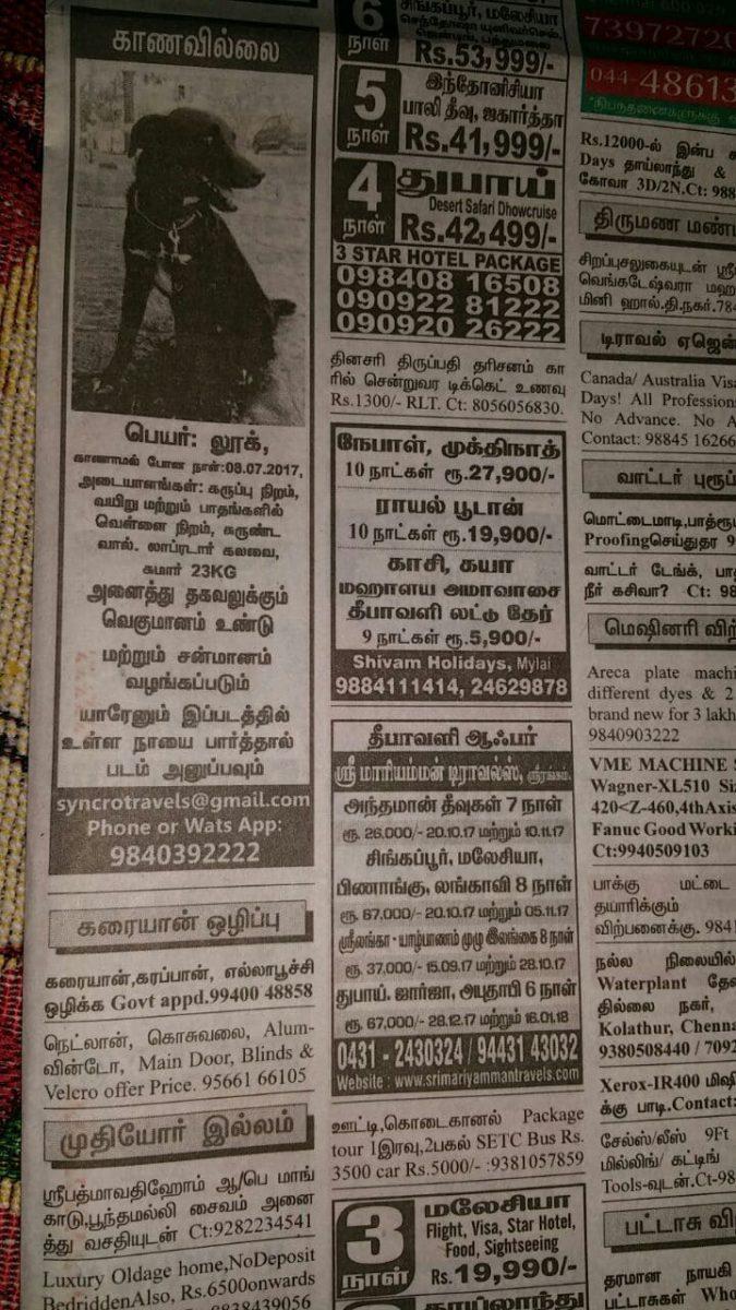 Zeitungsanzeige in Indien. Gestohlener Hund Luke soll mit Finderlohn wiedergefunden werden.