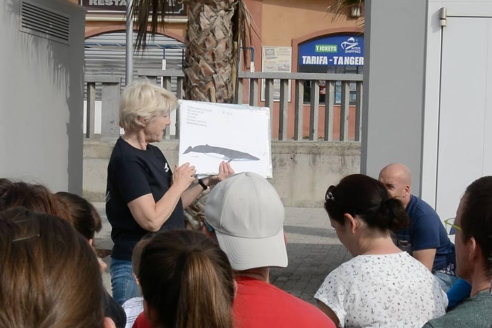 Stiftung firmm Vortrag vor Beginn der Whale Watching Tour in Tarifa